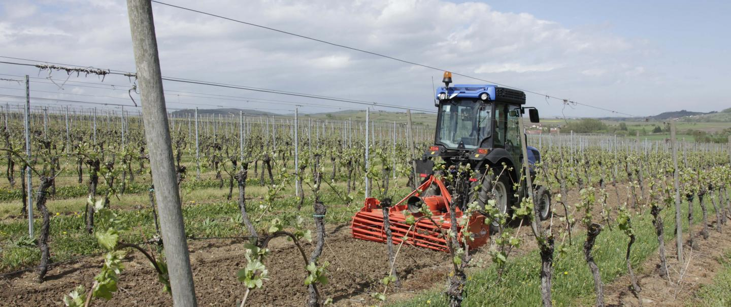 HRB 152 power harrow at work in vineyards